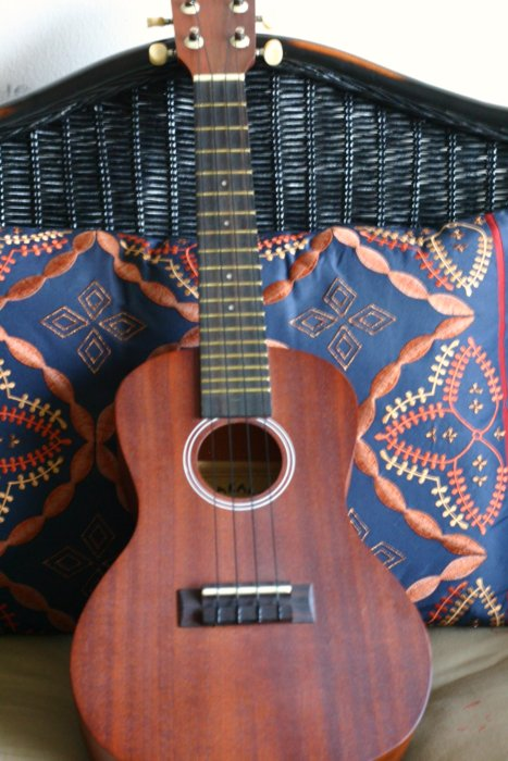 image of an ukulele