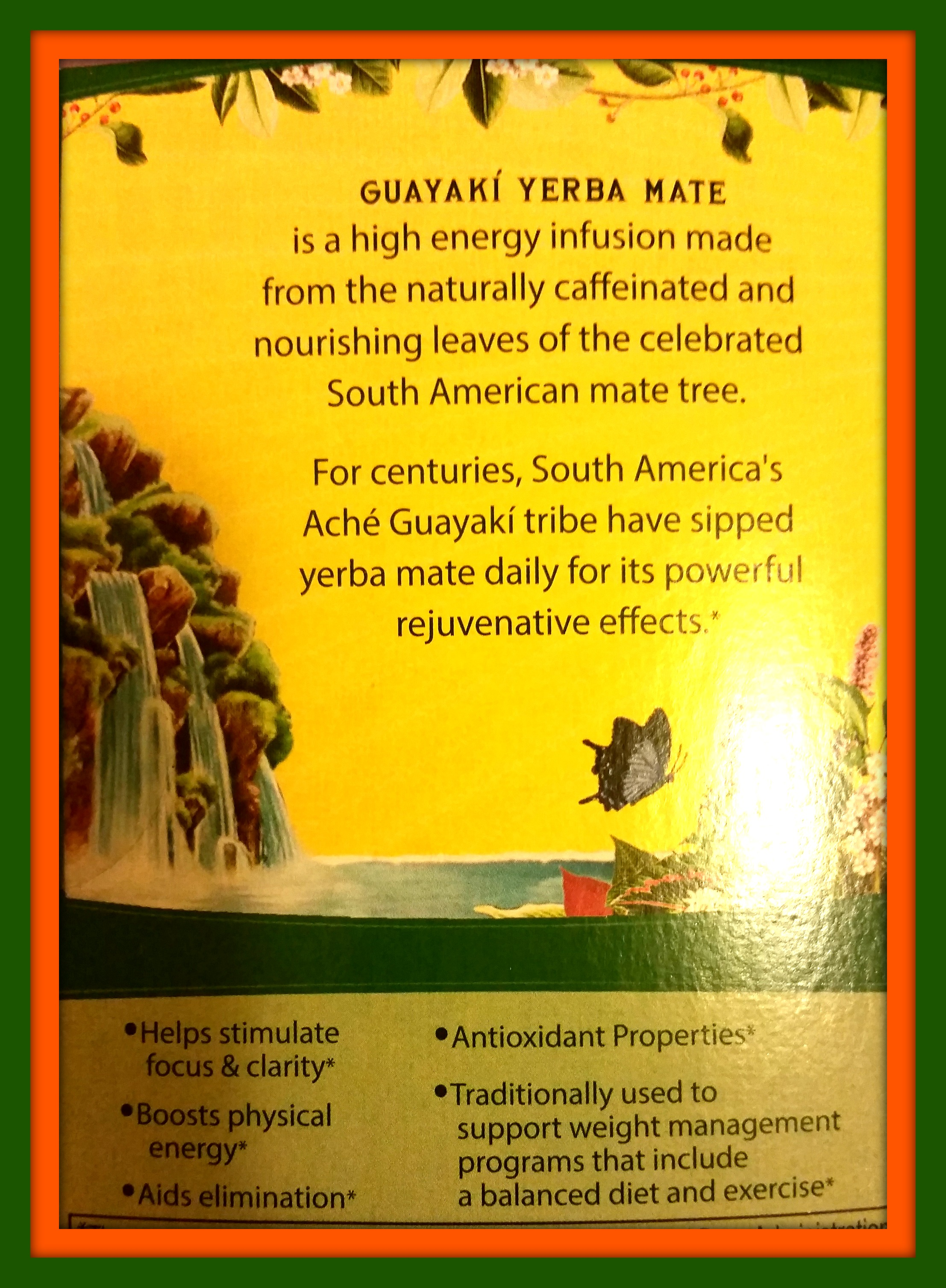 Image of Back of Yerba Mate Tea Box