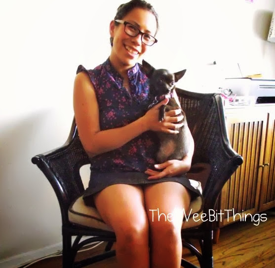 Photo image of woman sitting with her chihuahua on her lap